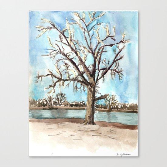flood survivor Canvas Print