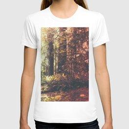 Beautiful California Redwoods T-shirt