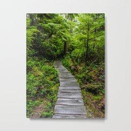Hiking to Cape Flattery, Olympic Peninsula, Washington Metal Print