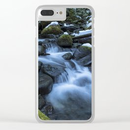 Snow, Moss, Water Over Rocks Clear iPhone Case