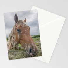 Horse at wall Stationery Cards