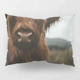 Scottish Highland Cattle Pillow Sham