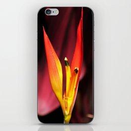 Tropical Blooms in Costa Rica iPhone Skin