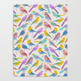 Dazzling Colored Bird Pattern Poster