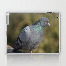 The great Indian pigeon Laptop & iPad Skin