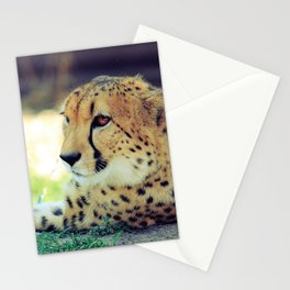 Lounging Cat Stationery Cards