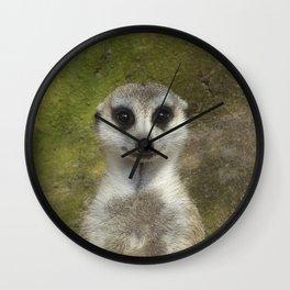 Funny Meerkat Wall Clock