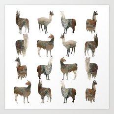 Llamas Team Art Print