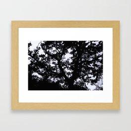 Aganist the Sky Framed Art Print
