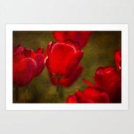 Springing Up Tulips Art Print