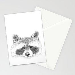 Cheeky Raccoon Stationery Cards