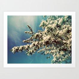 Snowy-leafed tree Art Print