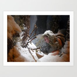 winter came (to the land of oblivion) Art Print