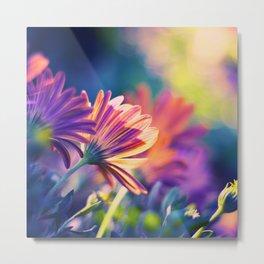 Colorful Days Metal Print