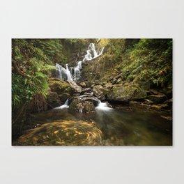 Torc Waterfall, Killarney, Ireland Canvas Print