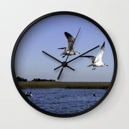 Sneakky Seagulls Wall Clock