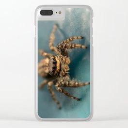 Small jumping spider Clear iPhone Case