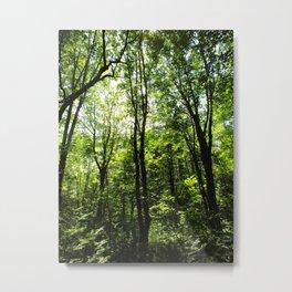 the green 1 Metal Print