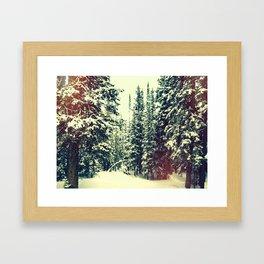 VCO Framed Art Print