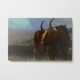 Scottish Highland Bull Metal Print