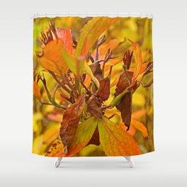 Autumn colour Shower Curtain