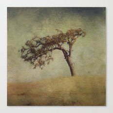 Mother Oak Canvas Print