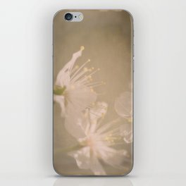 Fading Blossoms iPhone Skin