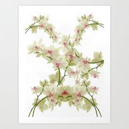 Orchidee fantasy Art Print