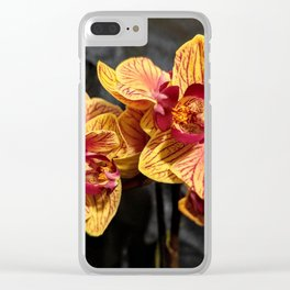 Yellow Orchids II Clear iPhone Case