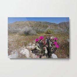 flowery scene Metal Print