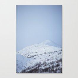 Alpine whte Canvas Print