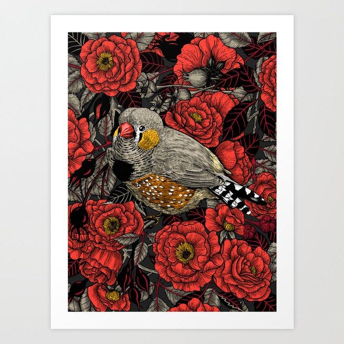 Zebra finch and red rose bush Art Print