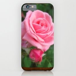 Pink Roses in Anzures 2 Blank P3F0 iPhone Case
