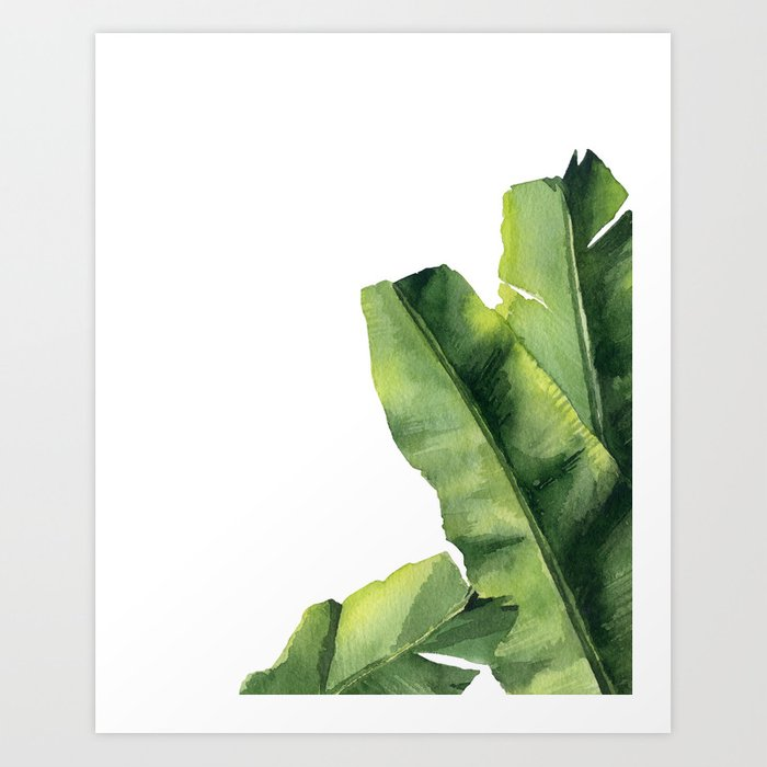Discover the motif BANANA LEAVES. by Art by ASolo as a print at TOPPOSTER