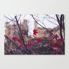 Blood Red Autumn Canvas Print