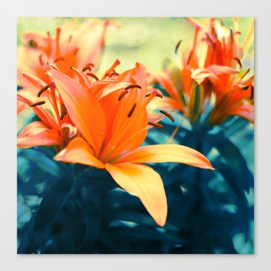 Summer Lilies I Canvas Print