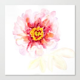 Peony Sherbet Painting Canvas Print