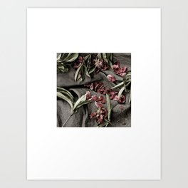 "Peonies are beautiful from the ""bud to to the end."" Art Print"