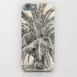 Catalogue of the Germain Seed and Plant Co (1900) - Phoenix canariensis / Canary Island Date Palm iPhone Case