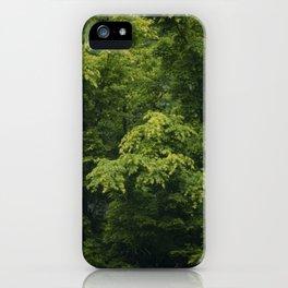 Rainy Japanese Maple iPhone Case