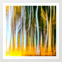 Woodland fall Art Print