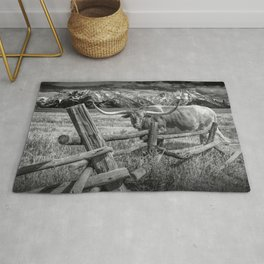 Texas Longhorn Steer by an Old Wooden Fence in Black and White Rug