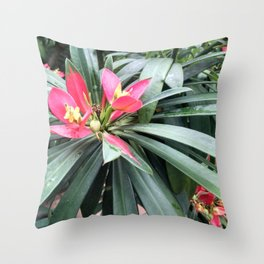 Vibrant Red Flowers Throw Pillow