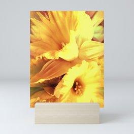 Daffodils In Spring Mini Art Print