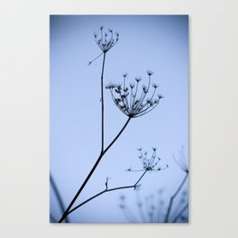 Silhouette on blue Canvas Print