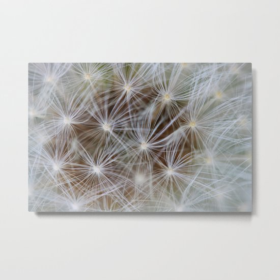 Nature showing off Metal Print
