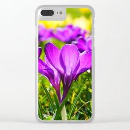 Purple Crocuses Clear iPhone Case