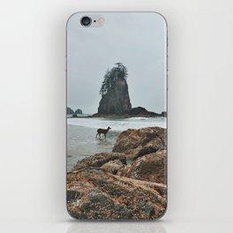 Deer on the Beach iPhone Skin