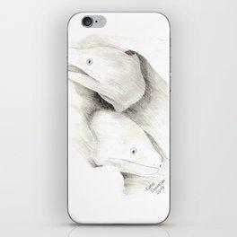 Moray Eels Sketch iPhone Skin