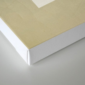 PJC/65 Canvas Print